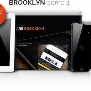 Brooklyn demo